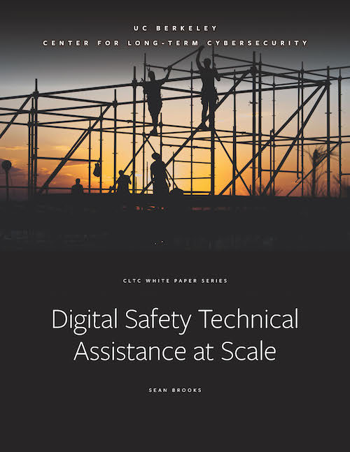 """""""Digital Safety Technical Assistance at Scale"""" Report"""